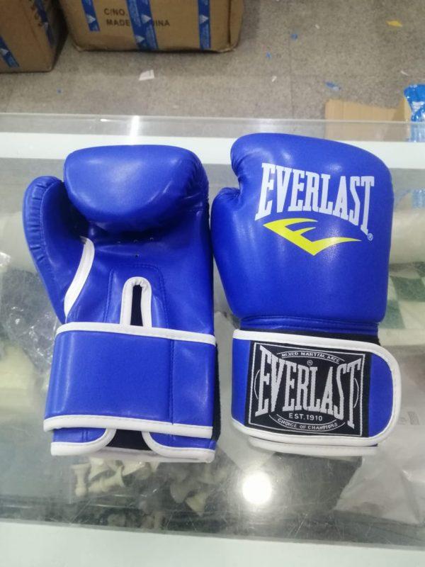Kickboxing/Karate/Punching Gloves